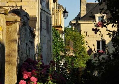 France, Loire Valley, Indre Et Loire, Candes Saint Martin