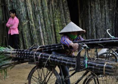 Voyage photo Vietnam_54