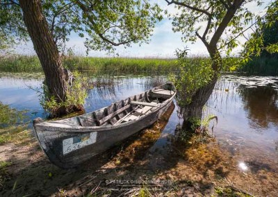 Barque dans le delta