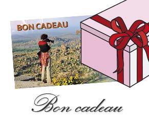 bon cadeau stage photo à Tours, Indre et Loire, Maine et loire, La Rochelle