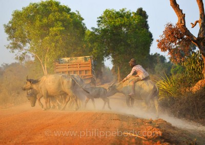 CAMBODGE, KOMPONG THOM//Cambodia, Kompong Thom