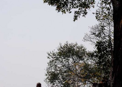 Voyage_photo_Angkor_0016
