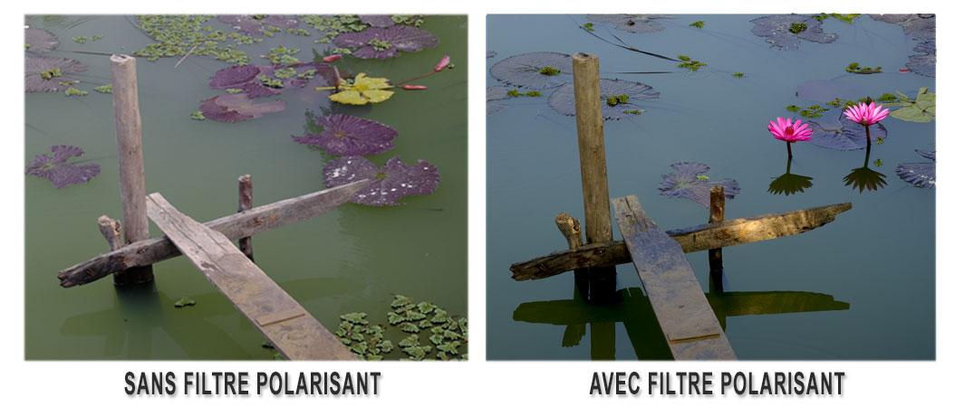 filtre polarisant
