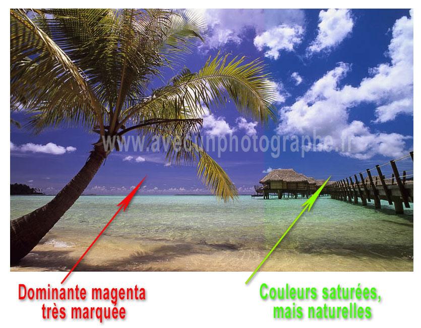 Attention aux modèles bon marché ... qui peuvent laisser une dominante magenta à vos images, pas toujours facile à corriger
