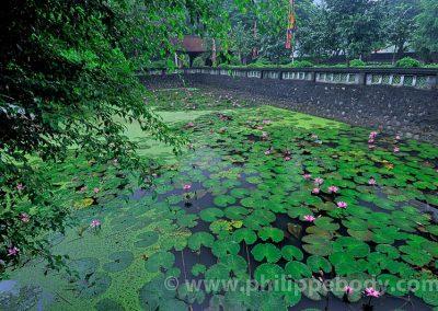 Voyage photo Vietnam_06