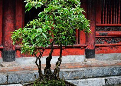 Voyage photo Vietnam_59