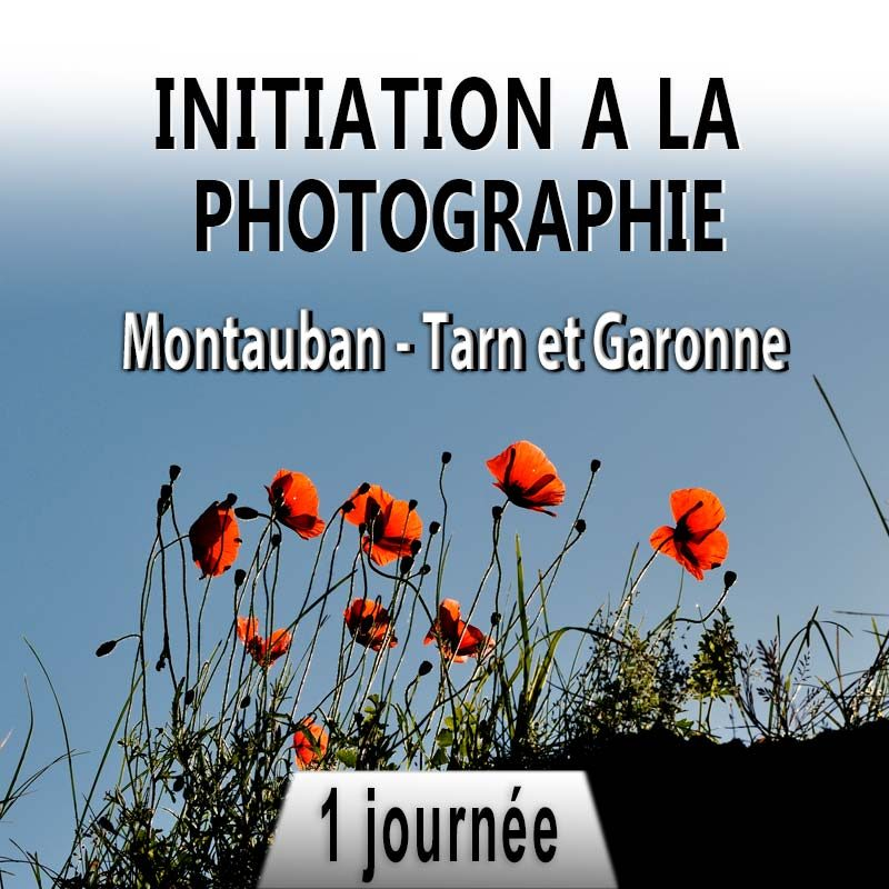 stage photo à Montauban