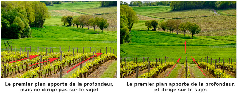 lignes directrices en photo