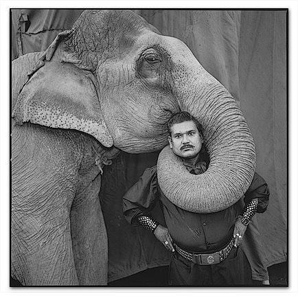 cirque en inde un sujet de prédilection de la photographe