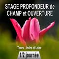 stage photo profondeur de champ