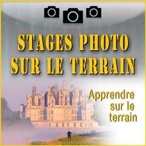 Stages photo sur le terrain