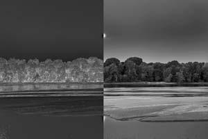 Créer un négatif numérique avec Photoshop pour la photo alternative